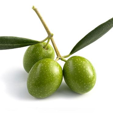 oliva-benefici-1